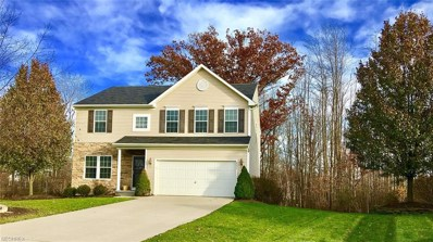 4622 Riverrock Way, Medina, OH 44256 - MLS#: 4055089