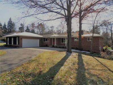 500 Sagamore Rd, Sagamore Hills, OH 44067 - MLS#: 4055227