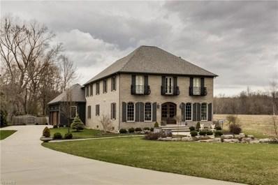 487 Walters Rd, Chagrin Falls, OH 44022 - MLS#: 4055328