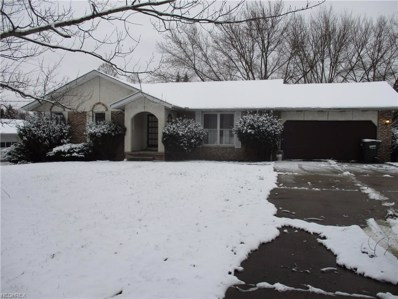 1118 Frost Rd, Streetsboro, OH 44241 - MLS#: 4055338