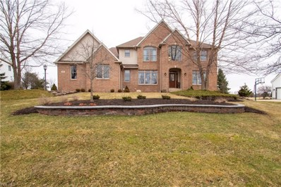 4335 Lakeview Glen Dr, Medina, OH 44256 - MLS#: 4055411