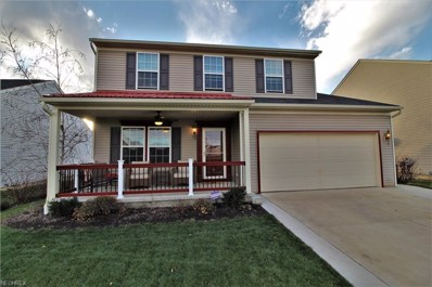 234 Chester Ave, Wadsworth, OH 44281 - MLS#: 4055445