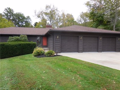 7290 S Meadow Dr, Concord, OH 44077 - MLS#: 4055531