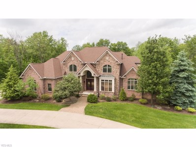 4399 Kings Forest Boulevard, Richfield, OH 44286 - #: 4055589