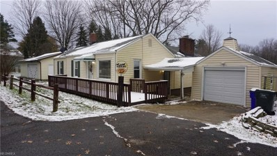 3175 State Route 43, Brimfield, OH 44260 - MLS#: 4055873