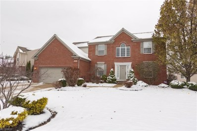 9786 Tuttle Rd, Olmsted Township, OH 44138 - MLS#: 4055972