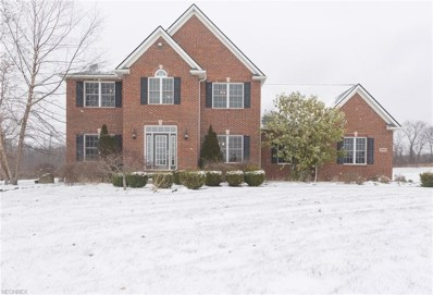 6905 Fairhaven Oval Dr, Medina, OH 44256 - MLS#: 4056029
