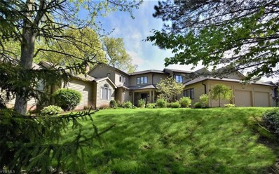 422 Fairway View, Chagrin Falls, OH 44023 - #: 4056091