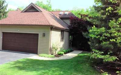 4849 Greenleaf Way, Medina, OH 44256 - #: 4056475