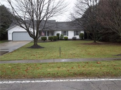 3968 Call Rd, Perry, OH 44081 - MLS#: 4056934