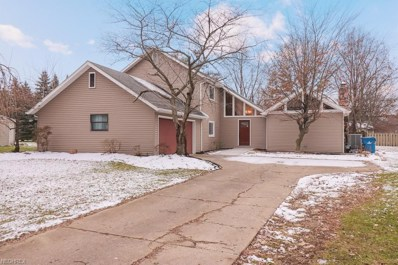6732 Miller Dr, North Ridgeville, OH 44039 - MLS#: 4057381