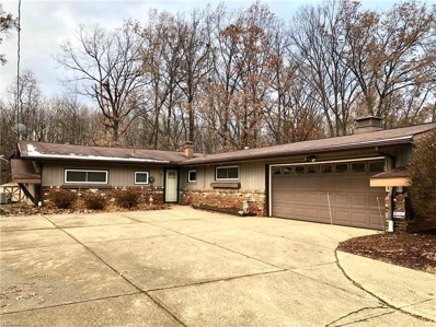 9074 Milford Dr, Northfield, OH 44067 - MLS#: 4057557