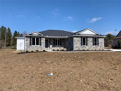2028 Bishop Woods Ct, Youngstown, OH 44514 - MLS#: 4057629