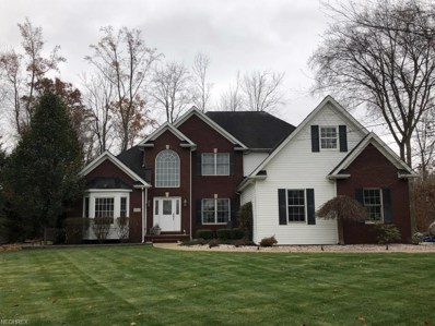 6040 Nature View Ct, Painesville, OH 44077 - MLS#: 4058047