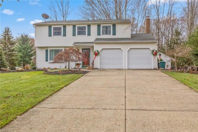 11840 Christian Ave, Concord, OH 44077 - MLS#: 4058146