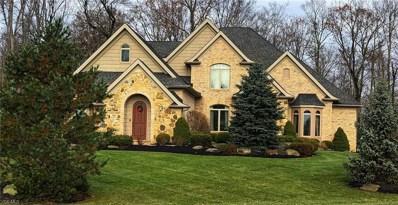 701 Walden Pond Cir, Hinckley, OH 44233 - MLS#: 4058279