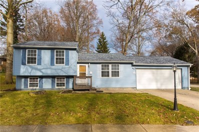 4251 Kenneth Rd, Stow, OH 44224 - MLS#: 4058503