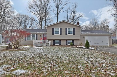 345 Stahl Ave, Cortland, OH 44410 - MLS#: 4058561