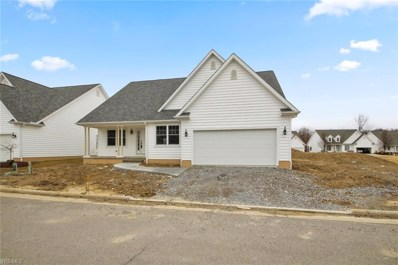 40 Saybrook Drive, Canfield, OH 44406 - #: 4058611