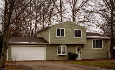 24 Leffingwell Drive, Orwell, OH 44076 - #: 4059856