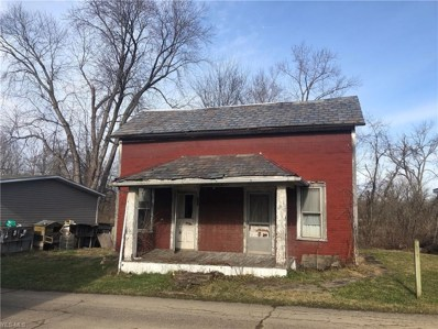117 King Ave, Lore City, OH 43755 - MLS#: 4060142