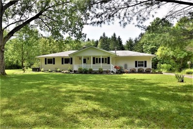 10940 Chillicothe Road, Kirtland, OH 44094 - #: 4060211