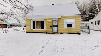670 E 266th St, Euclid, OH 44132 - MLS#: 4060797