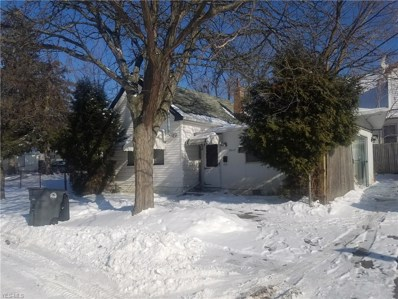 3623 E 120th Street, Cleveland, OH 44105 - #: 4061237