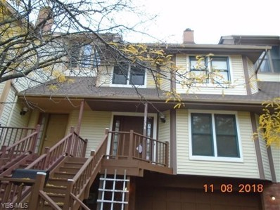 1734 Fulton Rd, Cleveland, OH 44113 - MLS#: 4061243