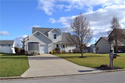 10505 Carousel Woods Dr, New Middletown, OH 44442 - MLS#: 4061610