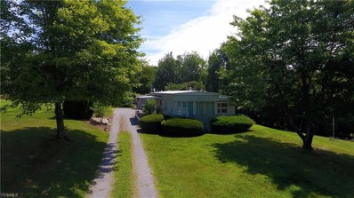 15978 Annesley Road, East Liverpool, OH 43920 - #: 4061697