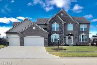 22334 Pinnacle Point, Strongsville, OH 44149 - MLS#: 4061743