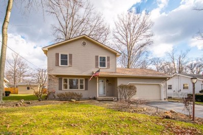 3912 Claridge Drive, Youngstown, OH 44511 - #: 4062090