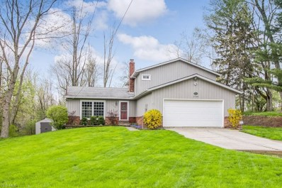 1765 Oakes Road, Broadview Heights, OH 44147 - #: 4062659