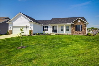 10370 Carrousel Drive, New Middletown, OH 44442 - #: 4062693