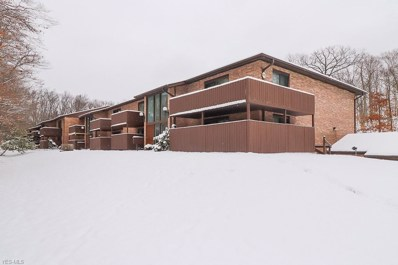 6850 Carriage Hill Dr UNIT 51, Brecksville, OH 44141 - MLS#: 4062720