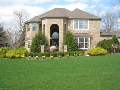 1365 Ashford Glen Lane, Sagamore Hills, OH 44067 - #: 4063200