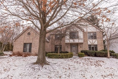 17114 Willow Wood Dr, Strongsville, OH 44136 - MLS#: 4063362