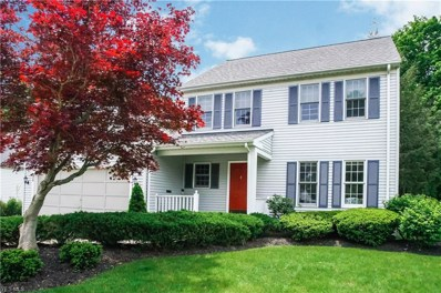 25 High Ct, Chagrin Falls, OH 44022 - #: 4063534
