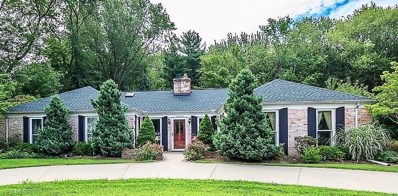 6040 Shore Drive, Madison, OH 44057 - #: 4063587