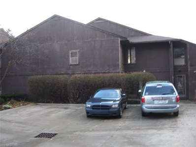 1432 Cleveland Heights Blvd UNIT 1432, Cleveland Heights, OH 44121 - MLS#: 4063639