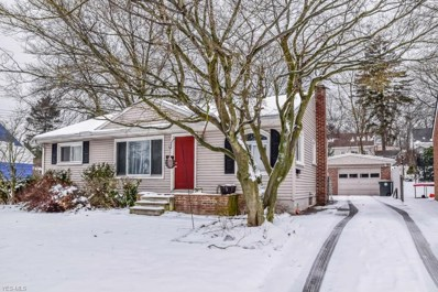 458 Alaho St, Akron, OH 44305 - MLS#: 4063719