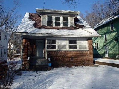 611 Blanche St, Akron, OH 44307 - #: 4063778