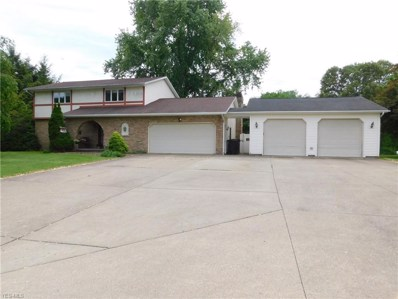 15317 Strader Road, East Liverpool, OH 43920 - #: 4063883