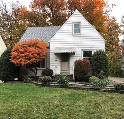 1107 Churchill Road, Lyndhurst, OH 44124 - #: 4064144