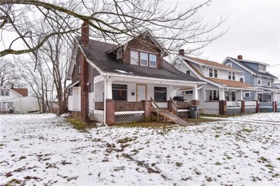 338 Hilton Avenue, Youngstown, OH 44507 - #: 4064504
