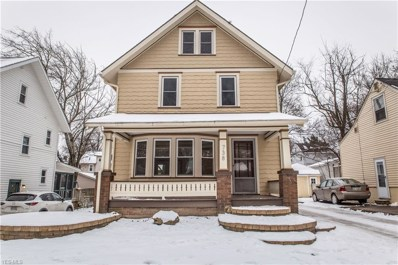 738 Chitty Ave, Akron, OH 44303 - MLS#: 4064530