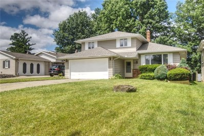 710 Anthony St, Richmond Heights, OH 44143 - MLS#: 4064602