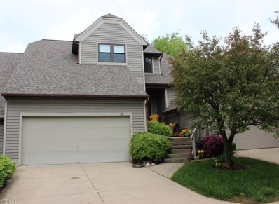 32 Forest Cove Dr, Akron, OH 44319 - #: 4065113