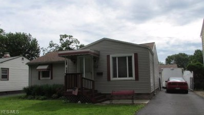 1177 E 360th Street, Eastlake, OH 44095 - #: 4065439